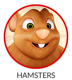 246x273-hamsters.jpg