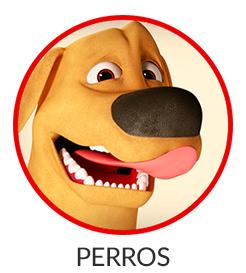 246x273-perros.jpg