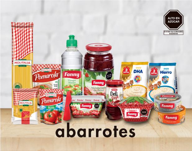 PORTADA DE ABARROTES.jpg