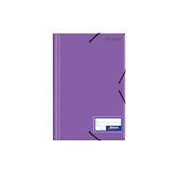 Folder c/liga plástico color entero morado