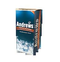 ANDREWS TRIPLE ACCION SACHET X 7,9 G CAJA X 90