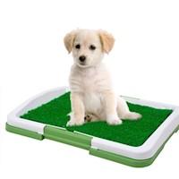 Megimperu - Baño Ecológico Para Perro