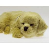 Juguete Perro que Respira Golden Retriver PP91-02BV6