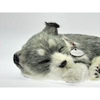 Juguete Perro que Respira Border Alaska Husky PP91-03BV6