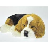 Juguete Perro que Respira Beagle PP91-15BV6
